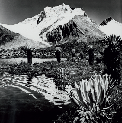 El sosiego de la montaña Colombiana